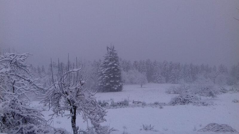 neige 30 cm du 26 Janvier (25)