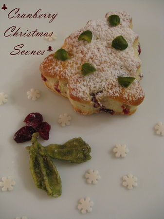 Cranberry_Christmas_Scones_035