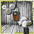 Pots & Fleurs
