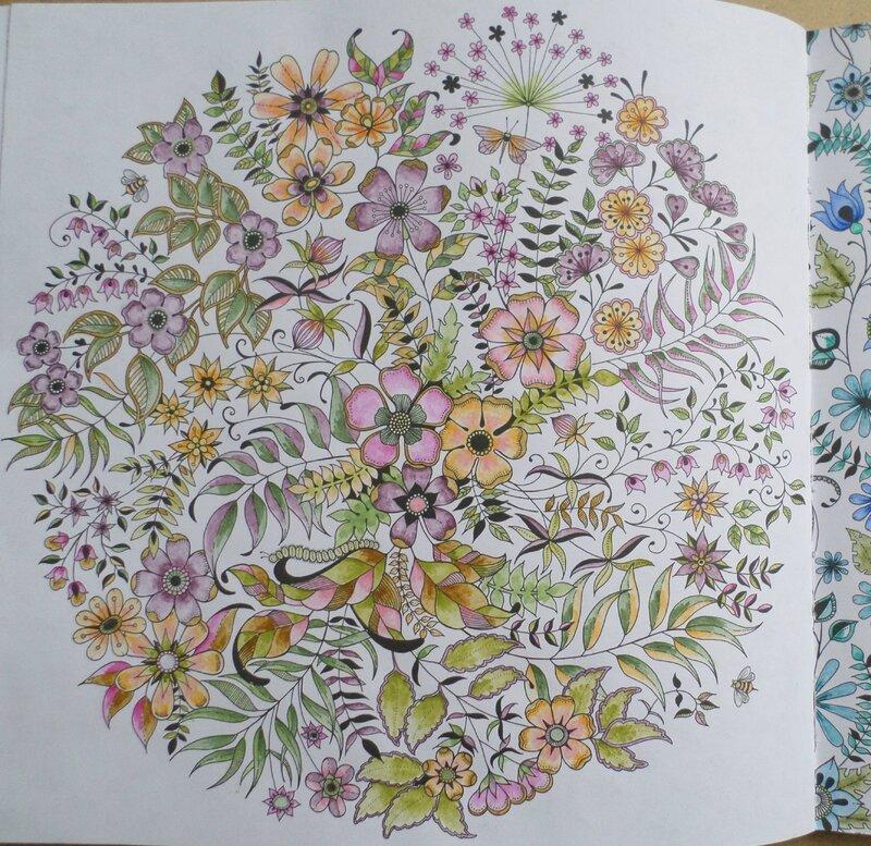 Livre coloriage jardin secret steffy elsass cr a for Jardin secret des hansen