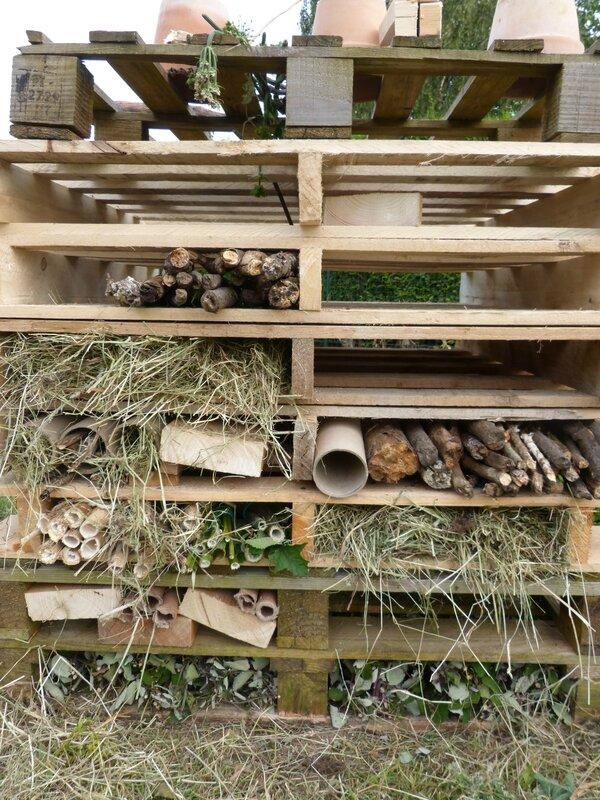 Cr ation d 39 un h tel insectes notre jardin ecologique - Hotel a insectes palettes ...