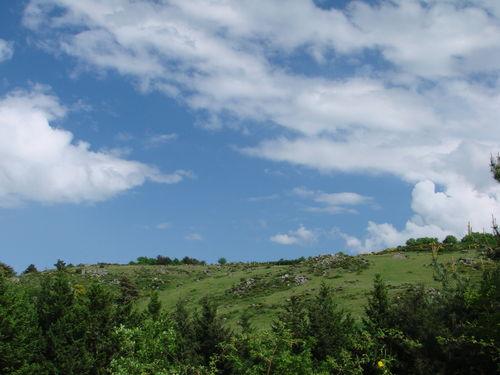 2008 05 18 Paysage de l'Ardèche près de Roumezoux