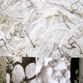 Embroidery inspiration: white