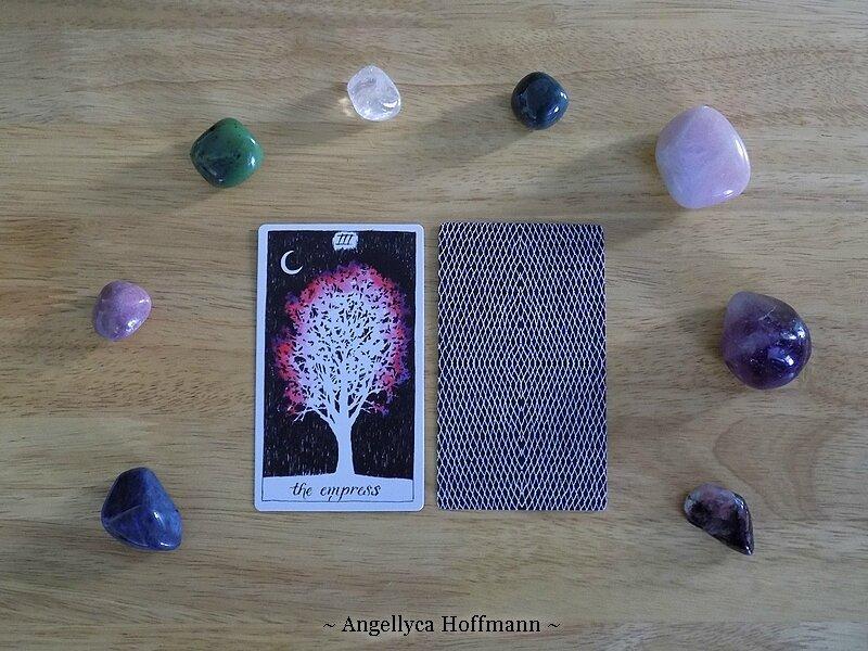 The Wild Unknown Tarot 8 - Blog Ésotérique Samhain Sabbath