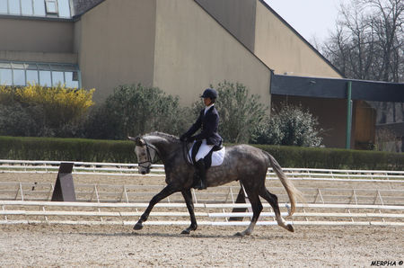 02___Quesnay_sur_le_dressage