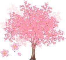 arbre_en_fleurs_2