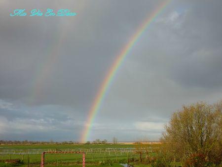 photos pour mon blog 2207
