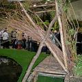 Un banc fait de troncs et de branches d'arbres