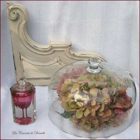 Cloche - flacon - hortensia
