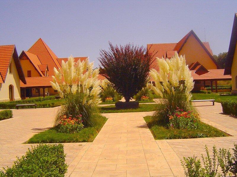 Campus Ifran