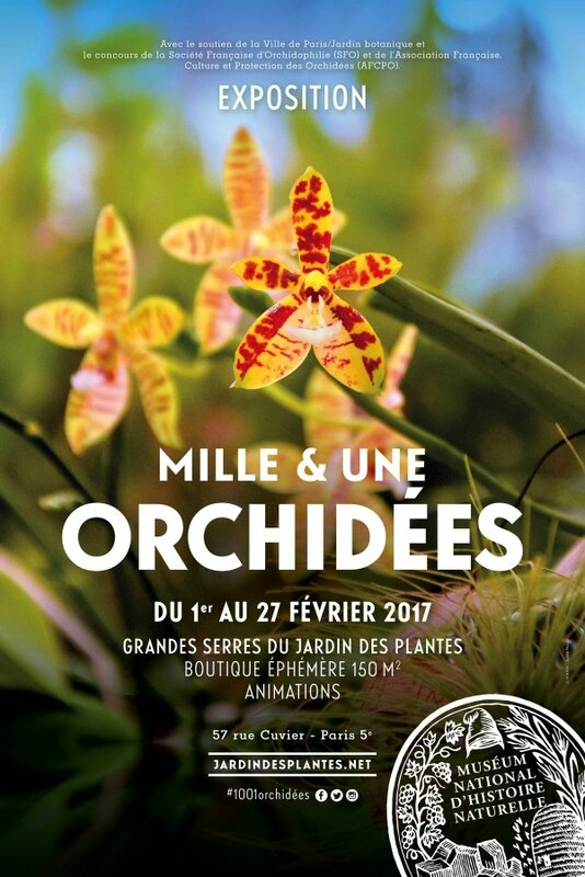 affiche-1001orchidees-2017