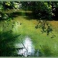 Arros Ricaud 0506156