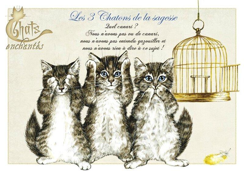 les 3 chatons de la sagesse