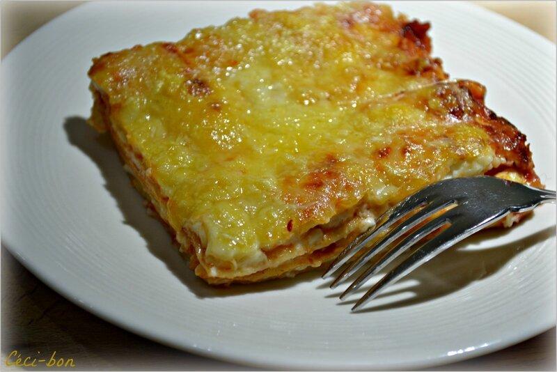 Lasagnes_b_chamel_aux_fromages_et_sauce_tomates