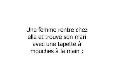 Sexe_des_mouches__dd___Compatibility_Mode__1_