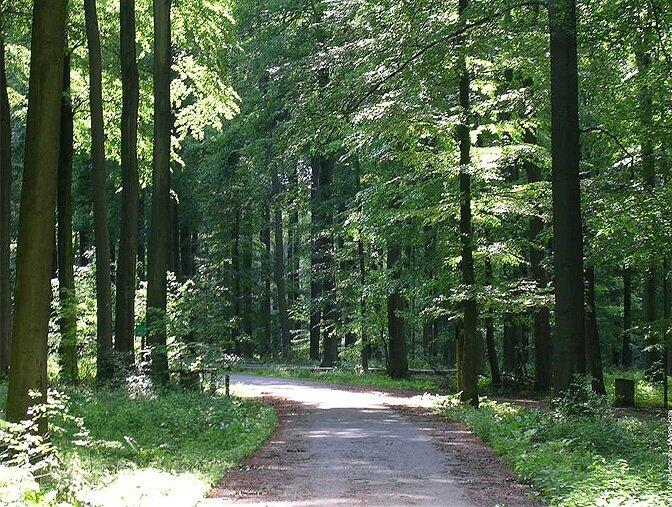 modern_vacation_rentals_brusseles_belgium_038