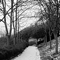 Parc Belleville, (neige)_9887