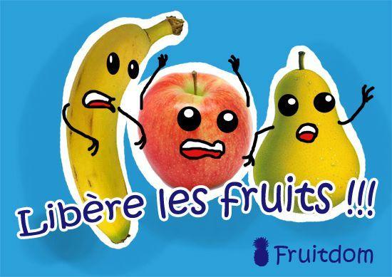 pub-fruitdom-pour-blog