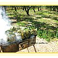 Artichauts au barbecue/ carciofi arrostiti alla brace
