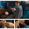 tricot guilhem