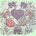 Violet et rose