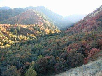 Cache Valley, Utah (en automne)