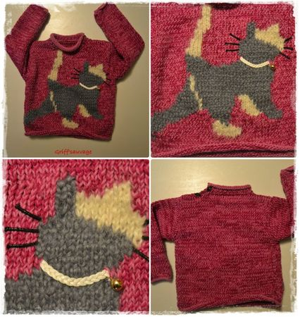 le pull chat