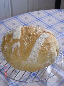 pain boule maison