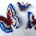 MES BEAUX PAPILLONS 8 EN VENTE SUR COMMANDE