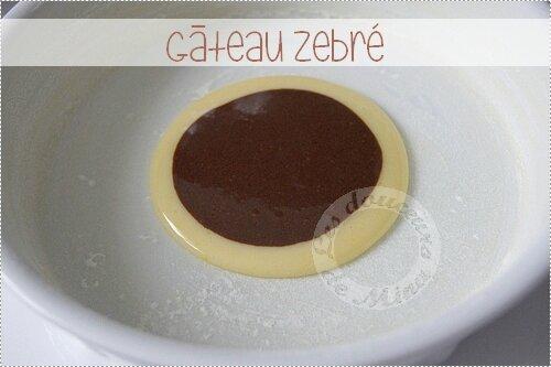 Gâteau_Zebré012