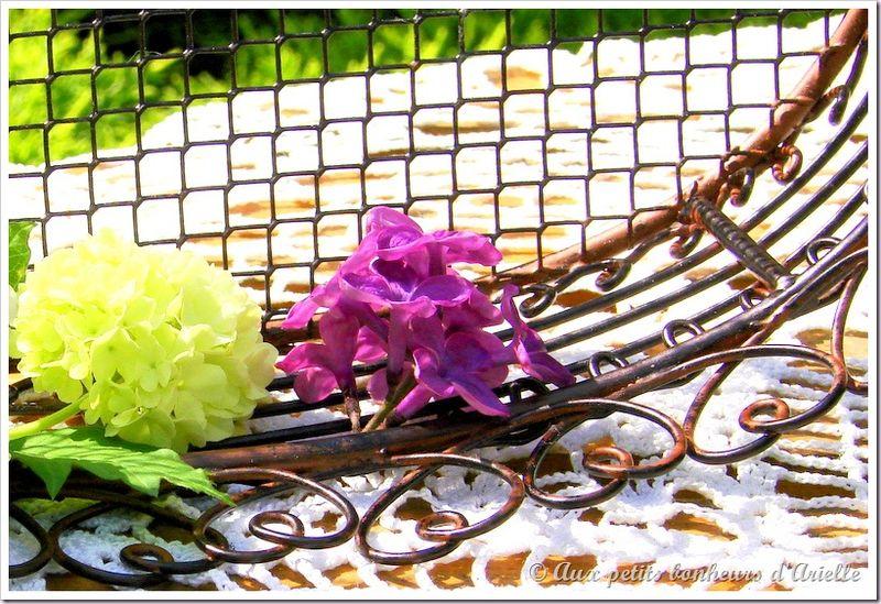 Bouquet de boule de neige et lilas (5)