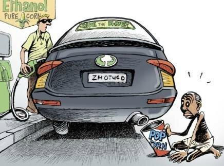 La production de biocarburants est extrêmement coûteuse et complètement inadaptée au parc automobile mondial.