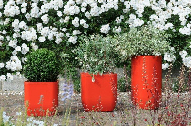 un-pot-couleur-pour-le-jardin-la-terrasse-ou-le-balcon_5175933