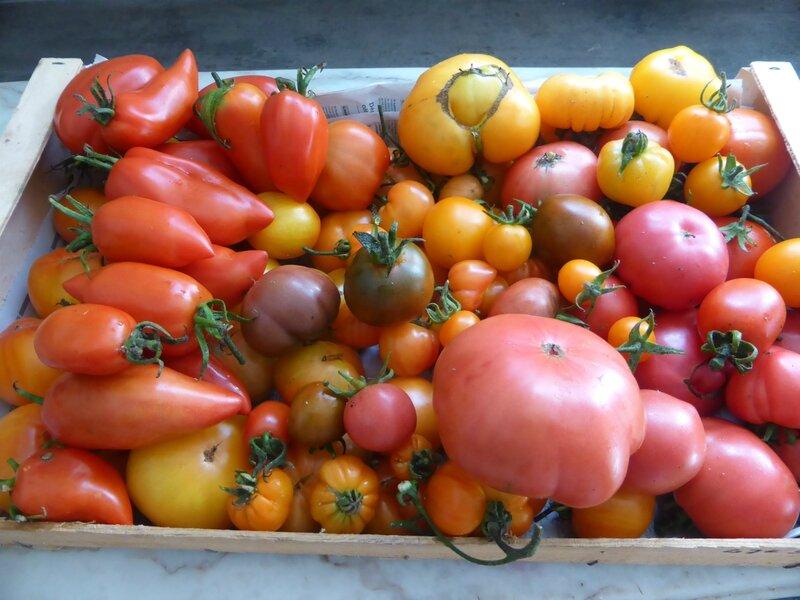 12-tomates (1)