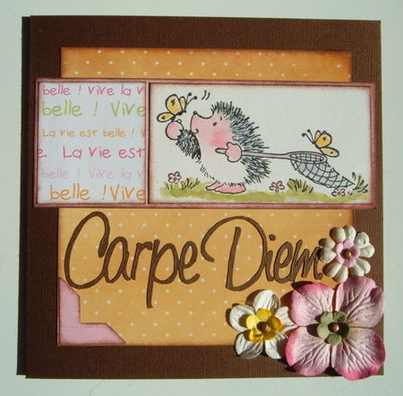 PS_20_Carte_Carpe_Diem