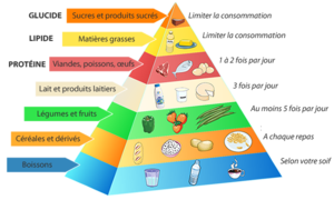 pyramide_alimentaire