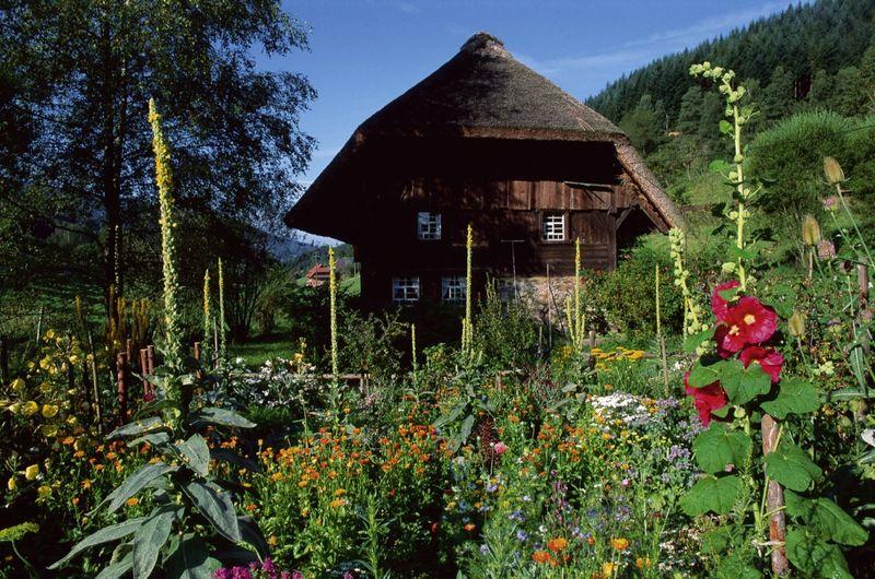 Landwasserhofmühle