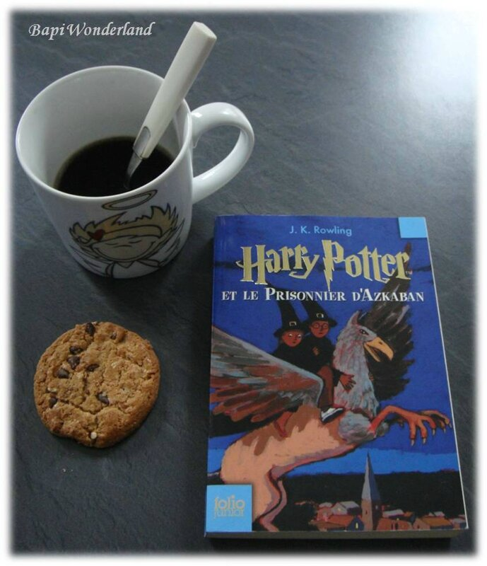 Message_11_02FEVRIER_03_Lecture_cocooning_Harry_Potter_3