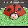 gâteau coccinelle 3