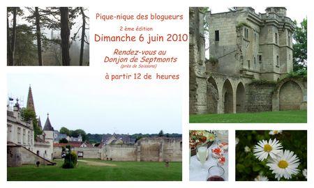 pique_nique_2010
