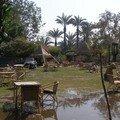 Egypt2007 113