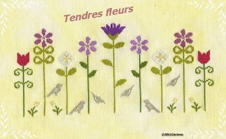 TendresFleurs