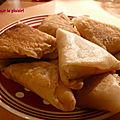 Samoussas gourmands riz / dinde / tomates et