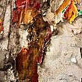 Affiches déchirées, Métro_7850