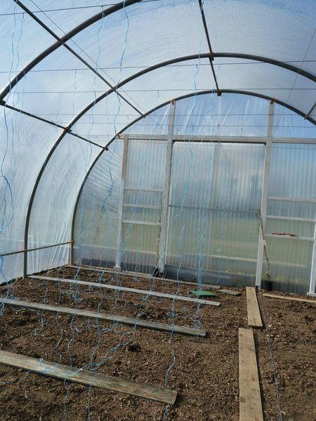 mars-20-ficelles et patates (16)