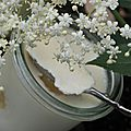 Panna cotta des fées aux fleurs de sureau et compotée de rhubarbe et d'angélique pour une