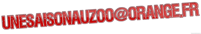 coollogo_com-1705772