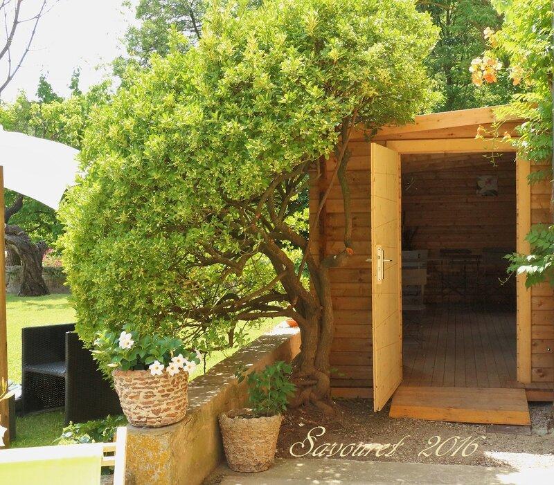 Chalet__entr_e_cot__jardin_
