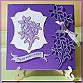 Du violet pour l'anniversaire de carinne