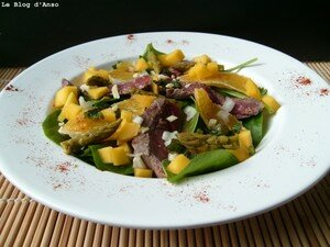 Salade_de_boeuf___pousses__pinards___mangue___orange_1